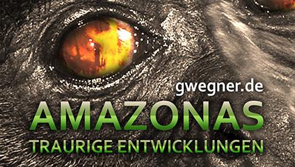 Amazonas - Traurige Entwicklungen
